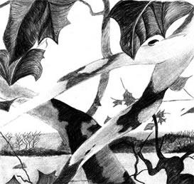 Wyeth Scene