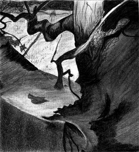 Wyeth Sketch 3
